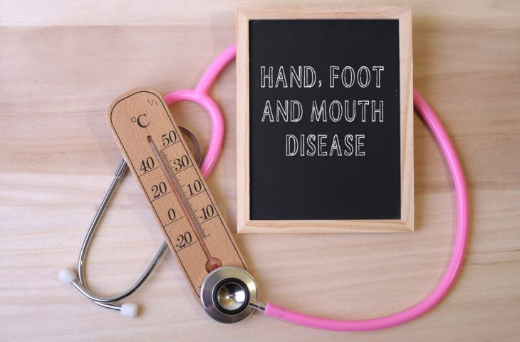 Hand, Foot And Mouth Disease: Signs, Symptoms And Treatments