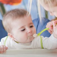 Popular Infant Food Allergy Questions Answered